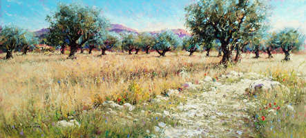 THE PATH THROUGH THE OLIVE GROVE